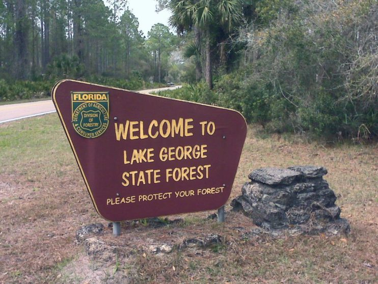 state forests