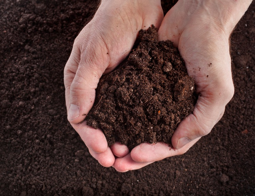 building good soil