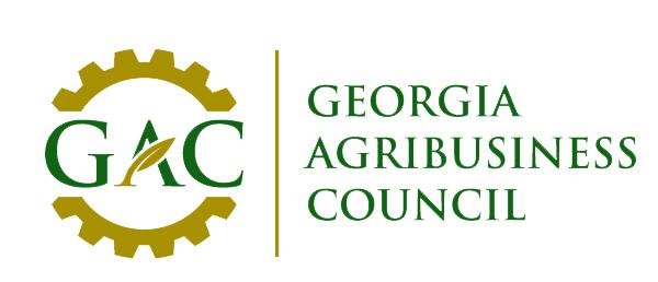 georgia legislative budget