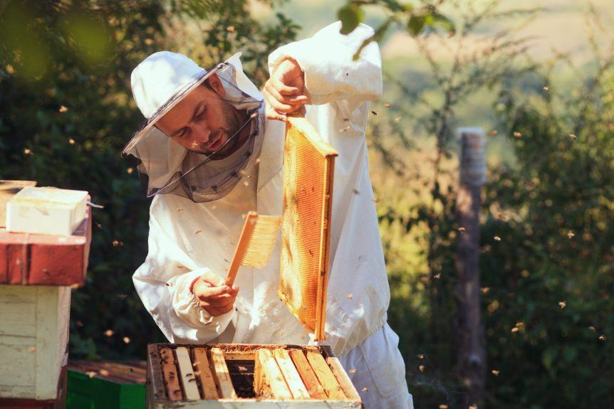 beekeeping symposium