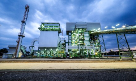Thailand's Drive For Sustainability: Boosting biomass growth