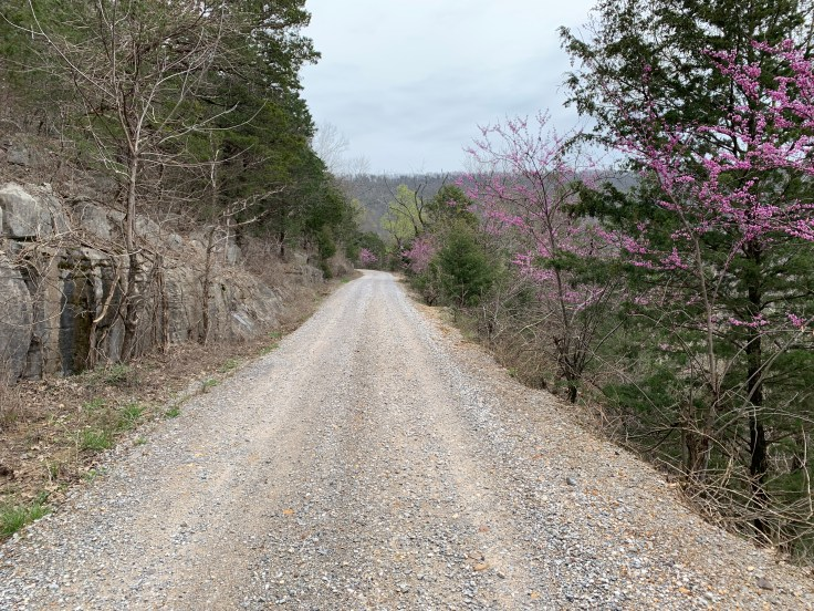 Newsome Gap Rd