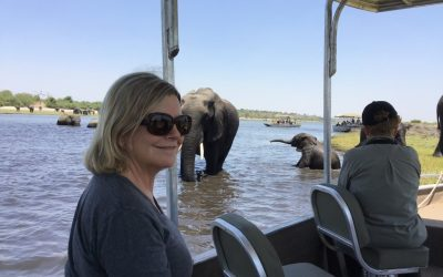Chobe River – another great day