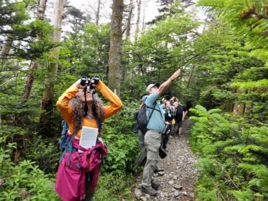 Birding Hike