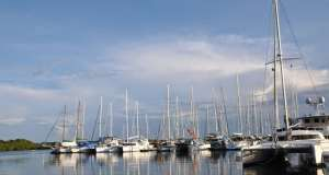 An image of Red Frog Marina in Panama