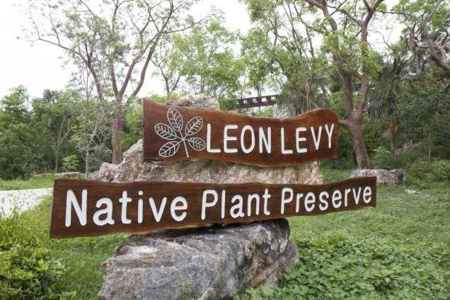 Leon Levy 4