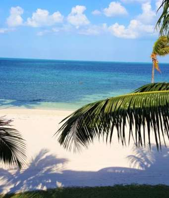 a view from Grand Bahama