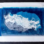 Squid Dreaming - Froukje Schaafsma