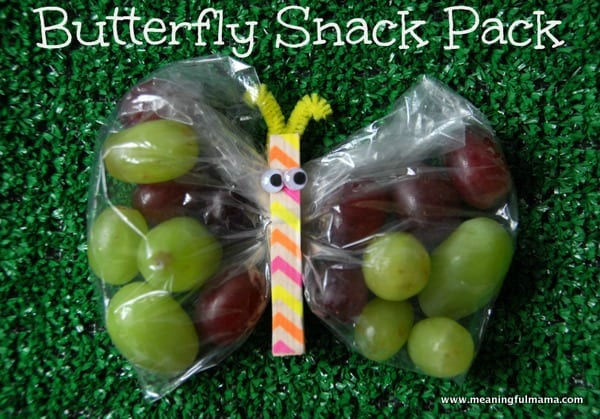Butterfly Snack Pack