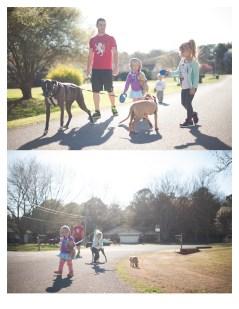 walking-dogs