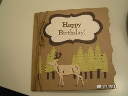 Camp Out Masculine Birthday Card