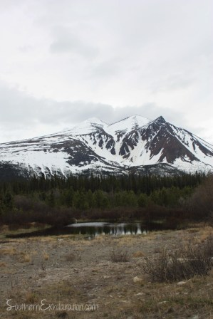 Montana Mountain | Carcross, Yukon