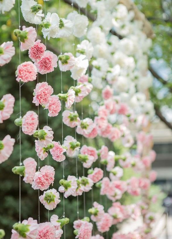 Carnation Curtain