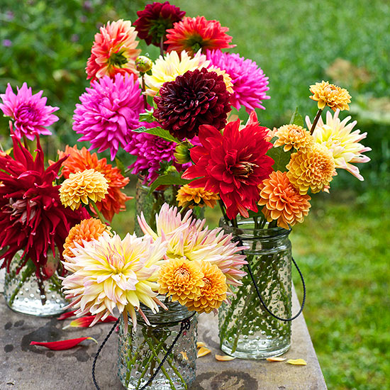 Simple Dahlia Centerpiece