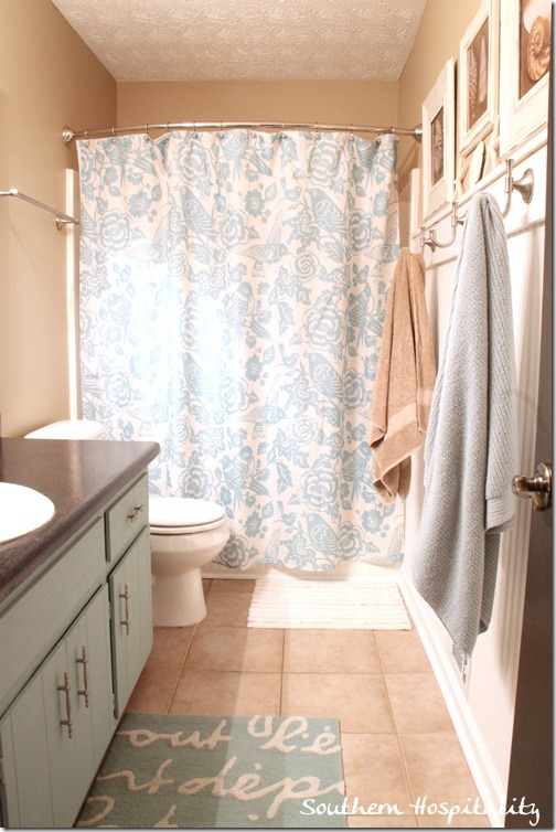 Guest bath shower curtain