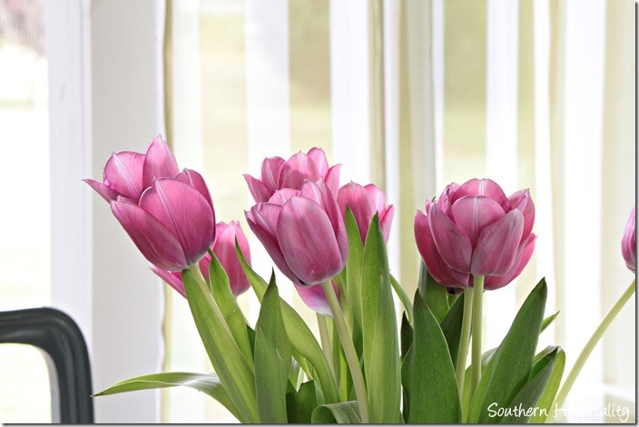 pink-tulips_thumb.jpg