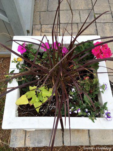 planting flowers003