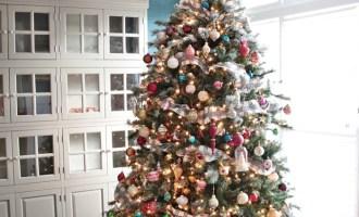 Snowy Sundays:  The Christmas Tree