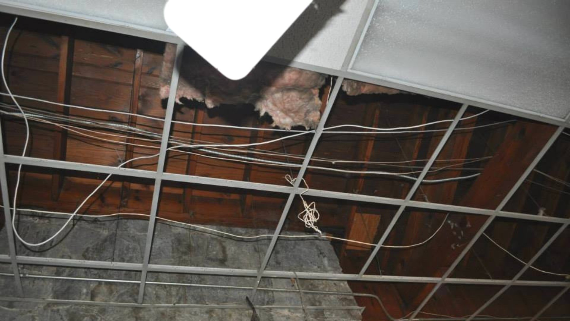 Removal of Ceiling Tiles Prior to Open Attic Encapsulation - Page Gallery