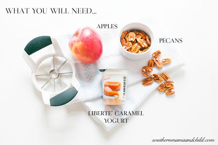 SMC-Caramel-Yogurt-Dip
