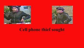 cell-phone-thief