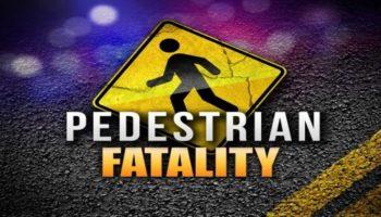pedestrian+killed-cc-lincense