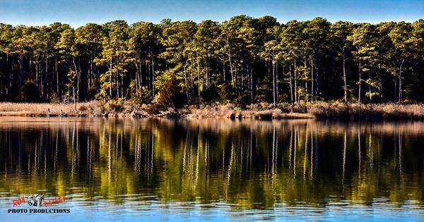 ron-bailey-st-marys-lake