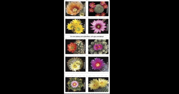 cactus-stamps