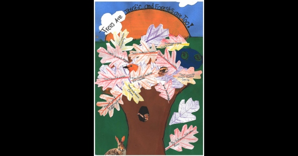 st-marys-arbor-day-poster-contest-second-place