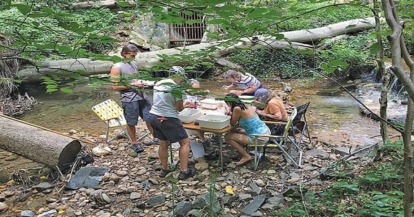 Rock-Creek-Stream-Monitoring