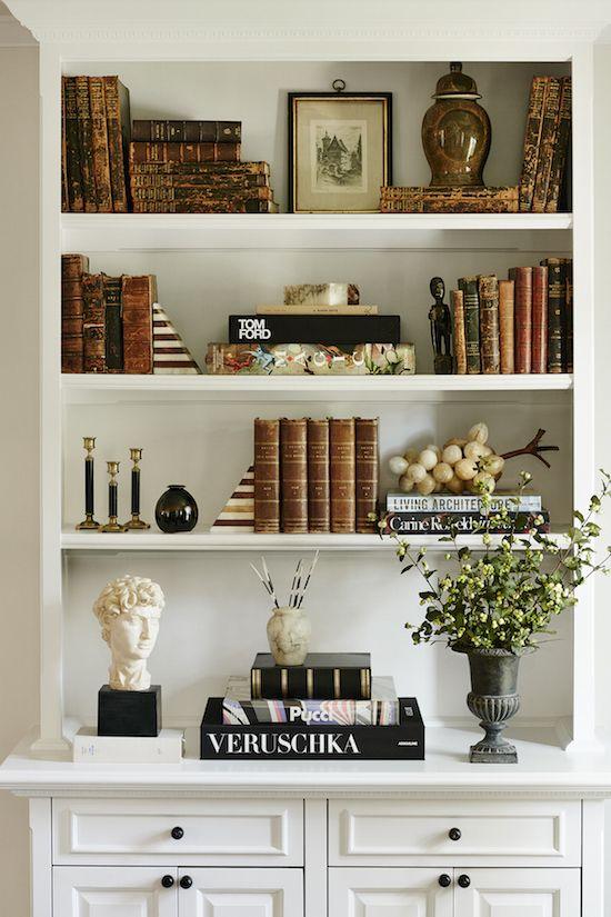 zhush bookcase