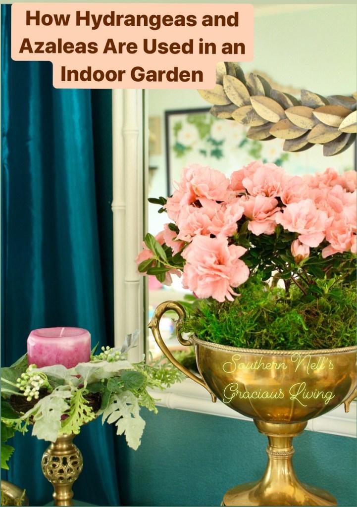 Pink azalea in vintage brass trophy cup