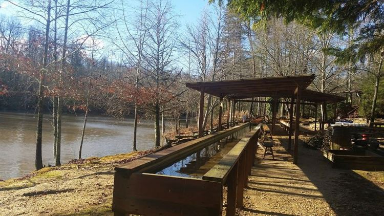Fun Family Activities in Cleveland, GA