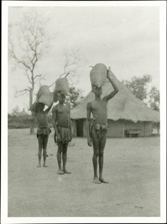 Zande termite gathering