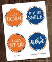 Orange and Blue Monthly Stickers