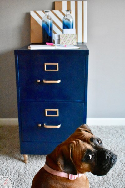 FIle Cabinet Makeover-Avery