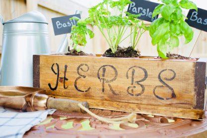 DIY Herb Box, Outdoor, Gardening, herbs, DIY, planter