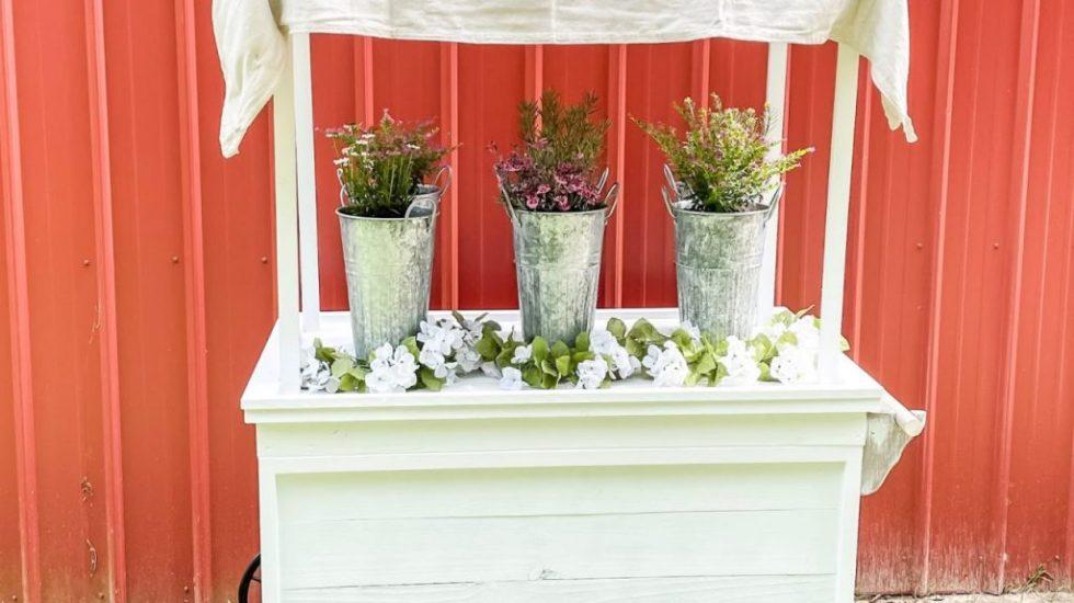 DIY Flower Cart: Easy Build Tutorial & Cut List