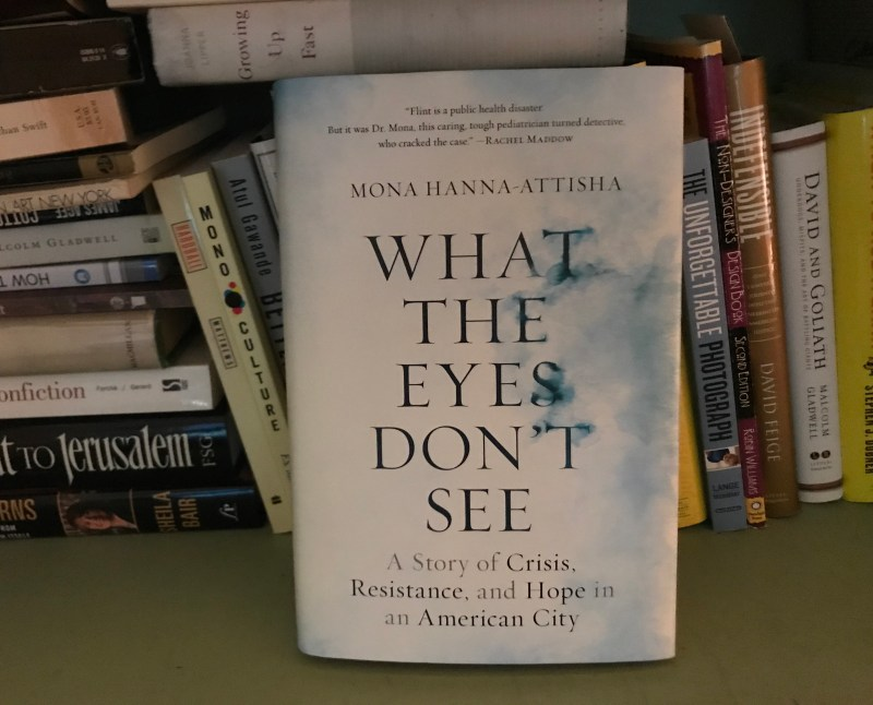 what the eyes don't see michigan author tour