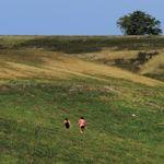 Walking-VistaViewPK_TH2315