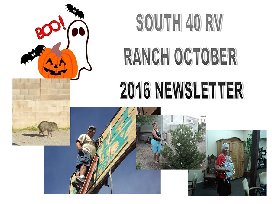 oct-newsletter-16-top