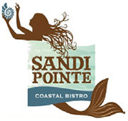 Sandi Point