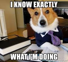 A Corgi dog in a suit and tie saying I know exactly what I am doing