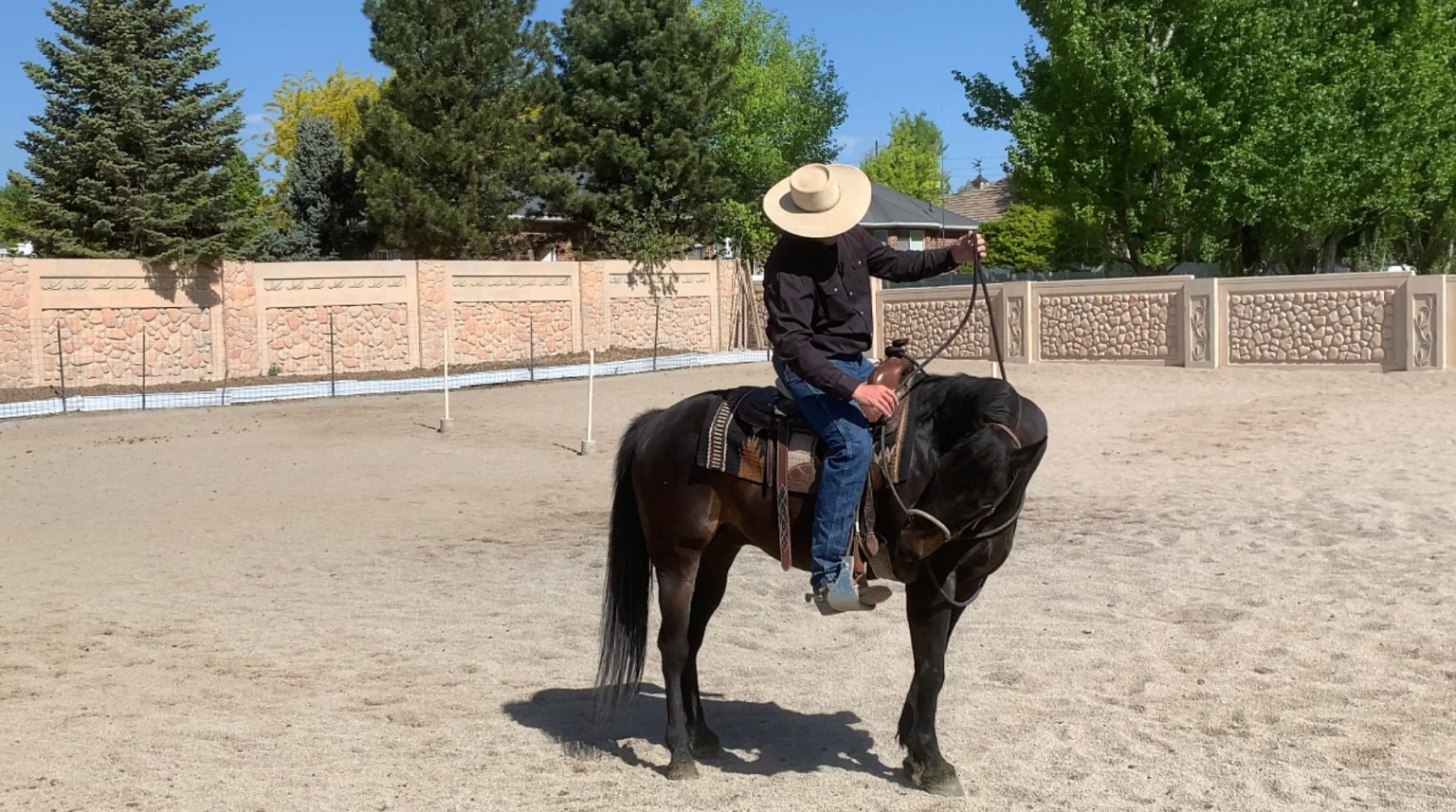 Flexing the neck from the saddle