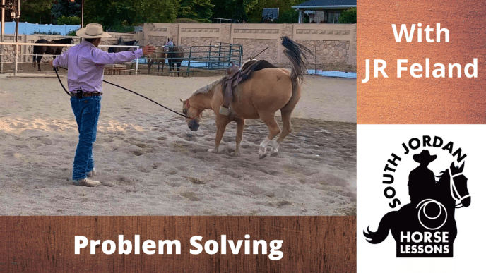Lunging Challenges 8 - What if they start bucking?
