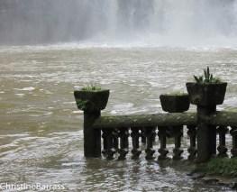 Sinking. Queensland Christine Barrass