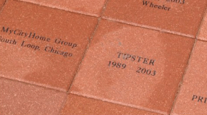 Brick text is centered on the brick, and can include 1 to 5 lines.