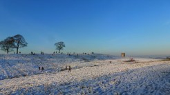 Sledging at Lyme Park by Anne Stewardson