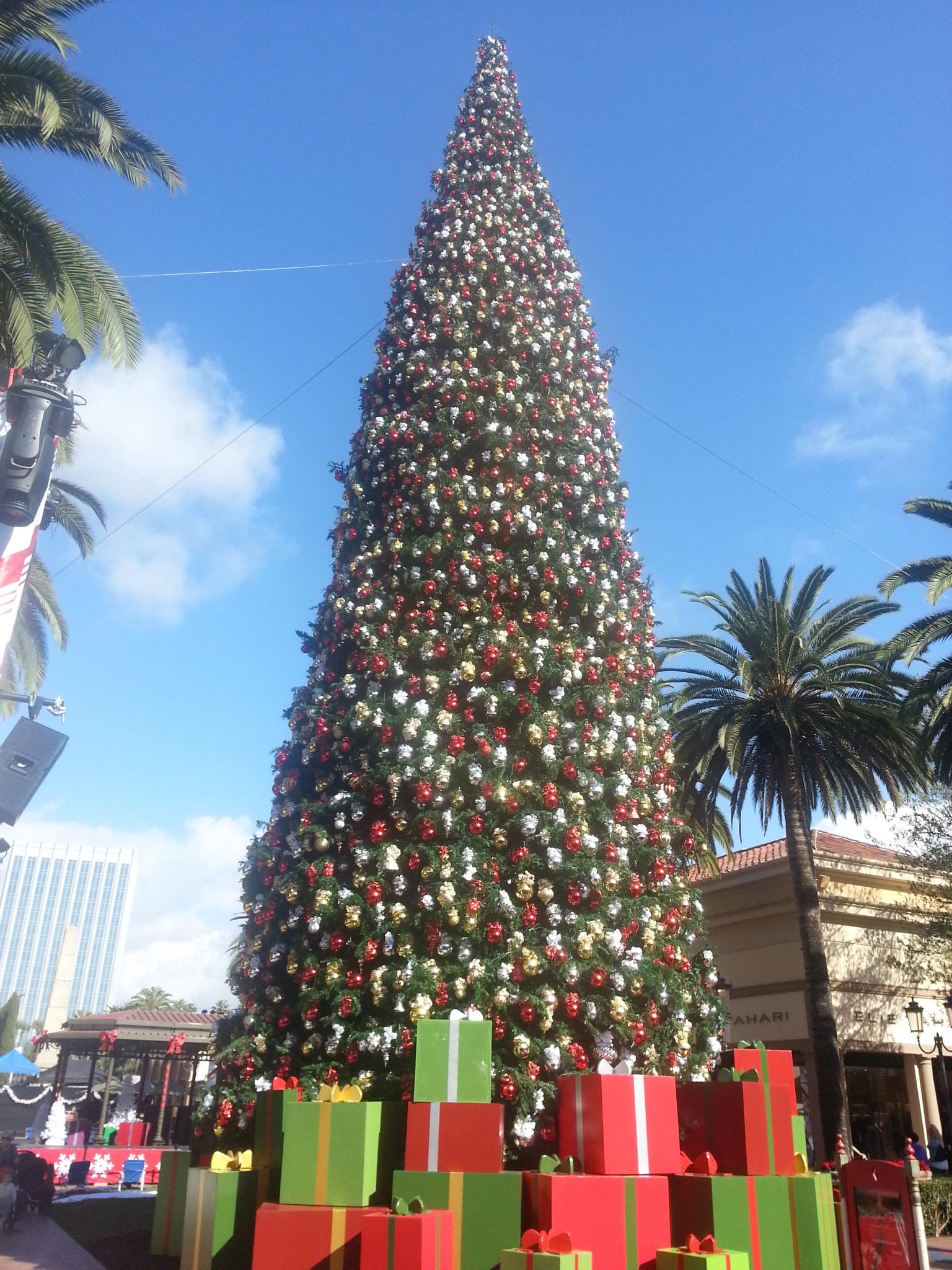 Christmas tree at fashion island 95