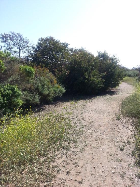 California Coastal Hiking by SouthOCBeaches.com